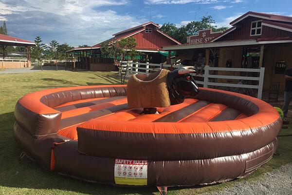 Rodeo Bull , รับผลิตเกมส์วัวกระทิงไฟฟ้า , วัวกระทิงไฟฟ้า , Rodeo bull machine ,วัวกระทิงรายการทีวี